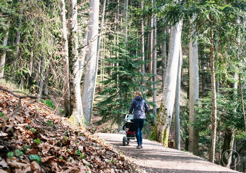 Mit Kinderwagen auf dem Tegernseer Höhenweg wandern