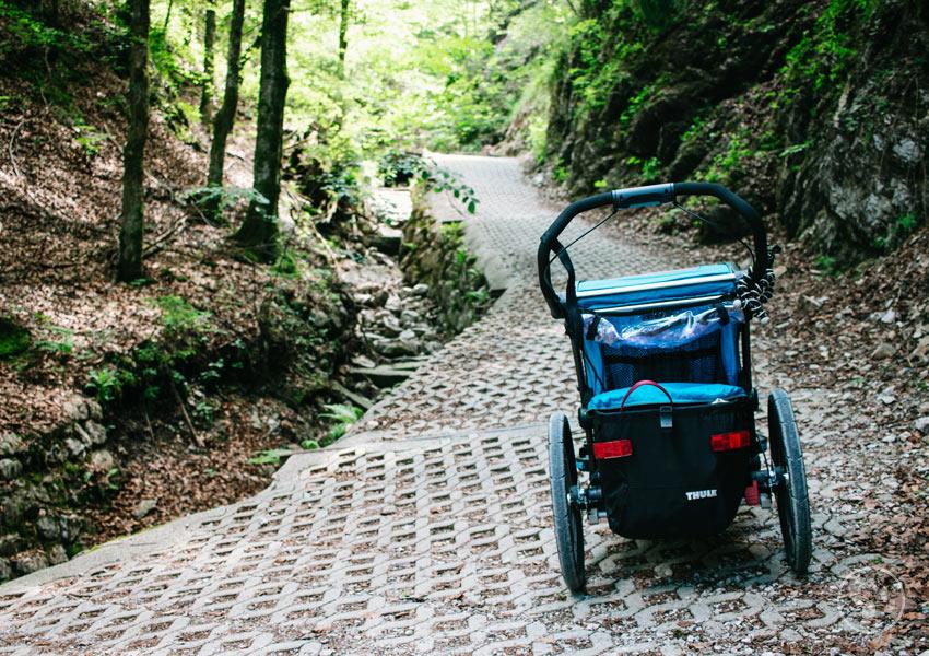 Sommerweg auf den Wallberg mit Kinderwagen