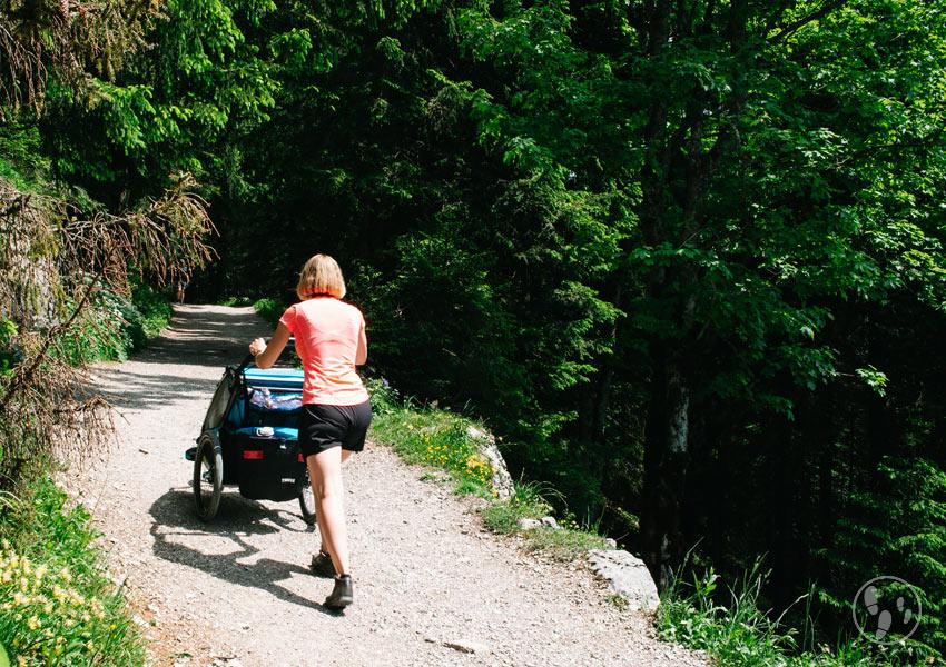 Wanderung auf den Wallberg mit Kinderwagen