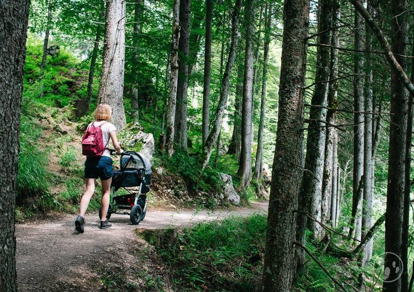 Wandern mit Kinderwagen am Spitzingsee