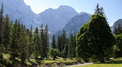 Rohntalboden im Karwendel
