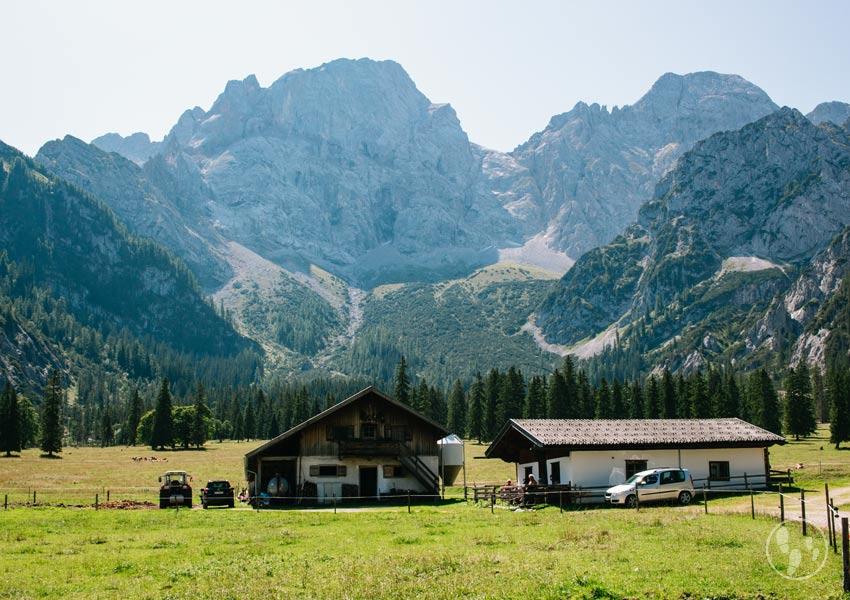 Rohntalalm im Karwendel