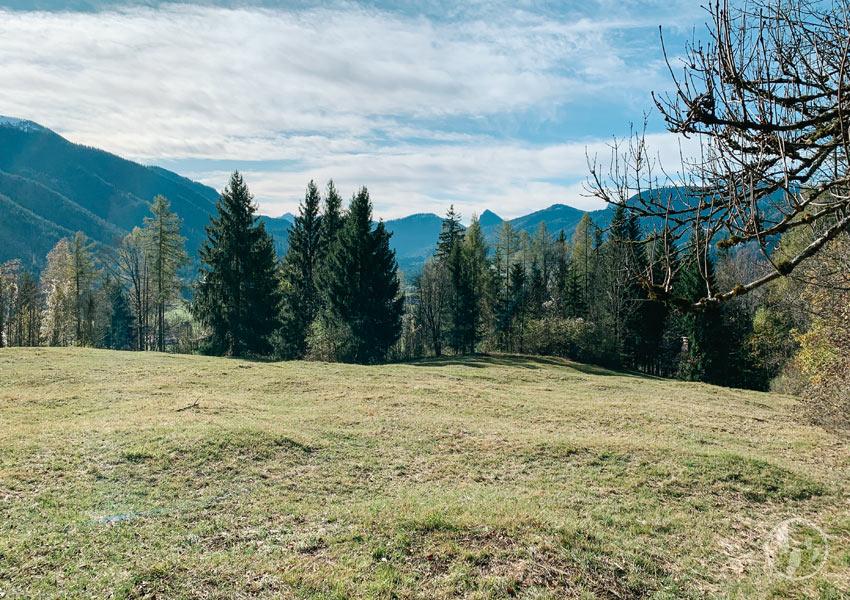 Blick ins Kreuther Tal auf dem Weg zum Berggasthaus Riederstein