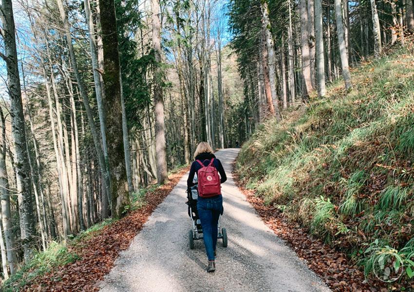 Wandern mit kinderwagen zum berggasthaus riederstein