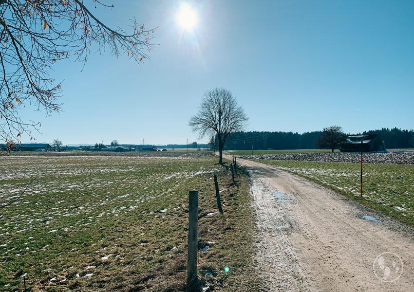 Feldweg bei Otterfing auf der Jasberg-Runde mit Kinderwagen.