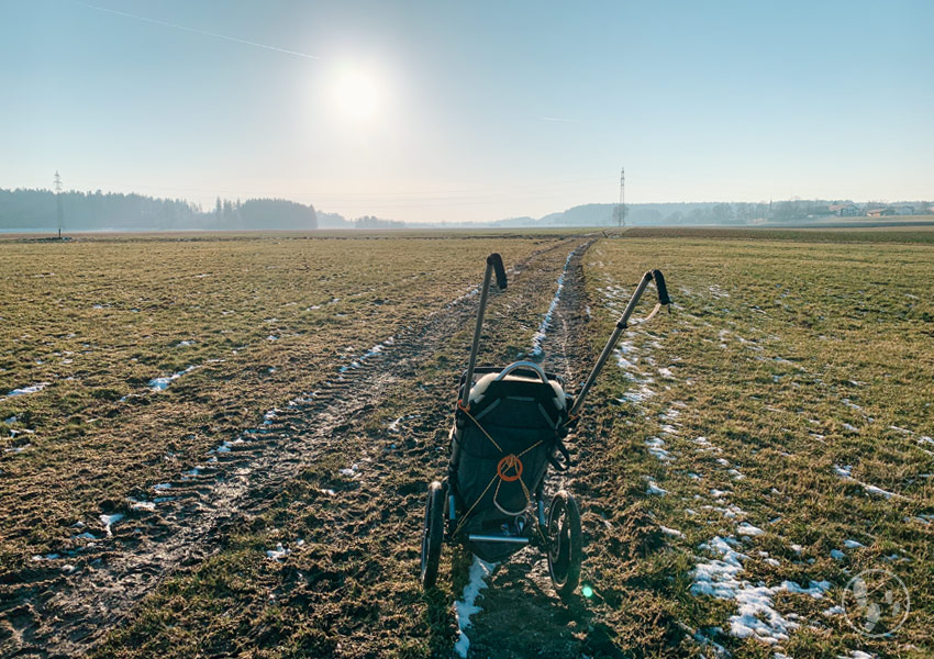 Wiesenweg Jasbergrunde mit Kinderwagen