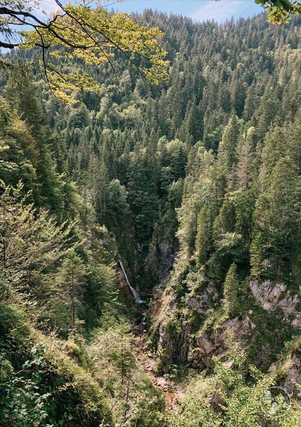 Ausblick auf den Röthelmoos Wasserfall