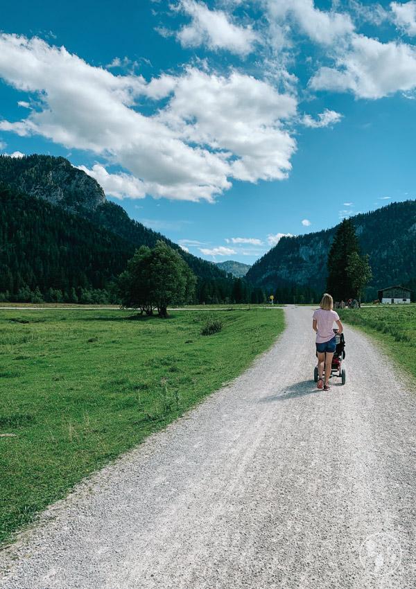 Röthelmoos-Alm im Chiemgau
