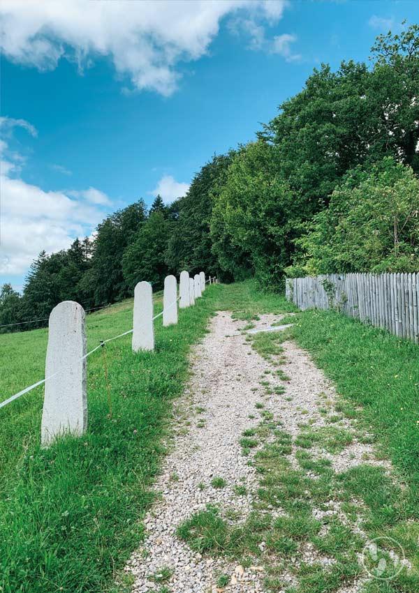 Weg auf den Fentberg
