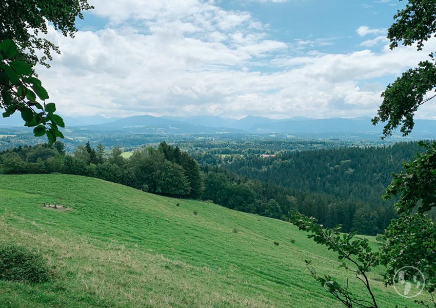 Blick vom Fentberg zum Mangfallgebirge