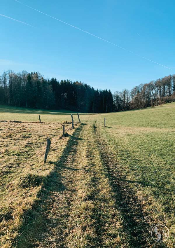 Wiesenweg beim Weyarner Lindl
