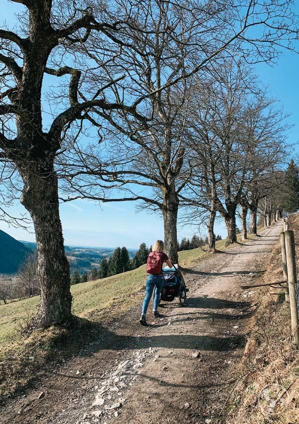 Wanderung zur Schliersbergalm mit Kinderwagen