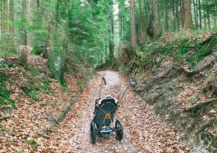 Der Hike Kid im Wald
