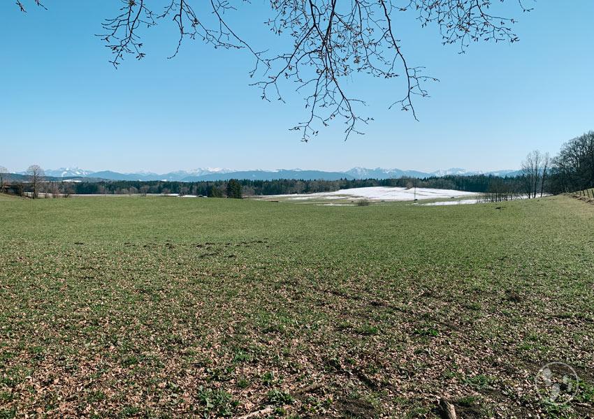 Blick vom Asberg bei Großhartpenning mit Bergpanorama