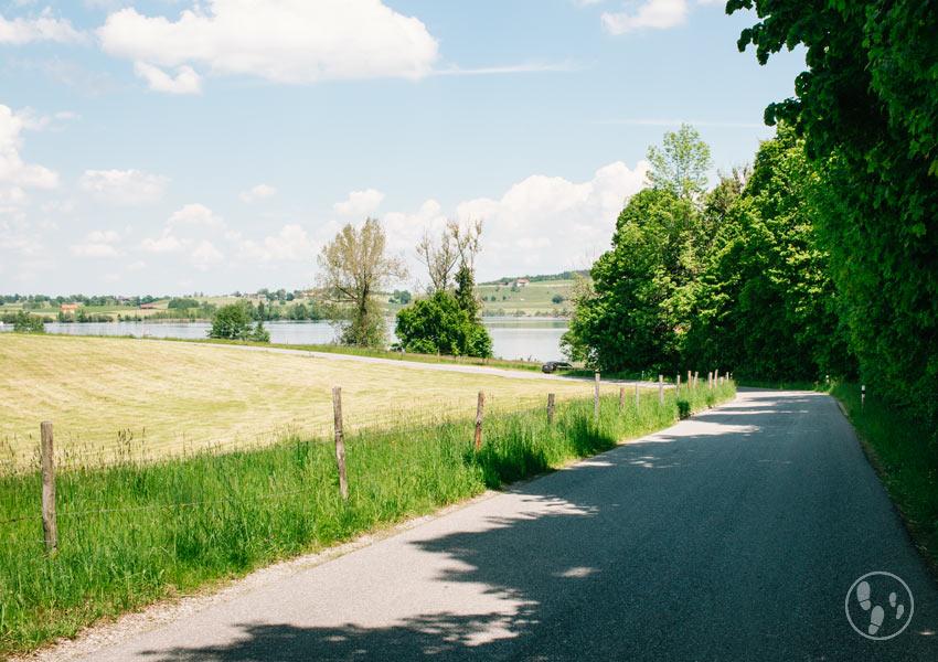 Rundwanderung Riegsee mit Kinderwagen: Straße nach Egling