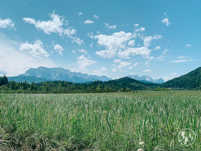 Rundwanderweg Barmsee: Blick ins Karwendel