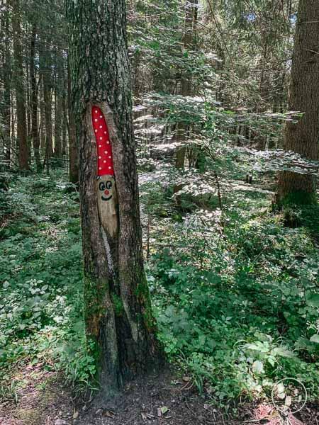 Zwerg im Baum im Fischbachauer Märchenwald