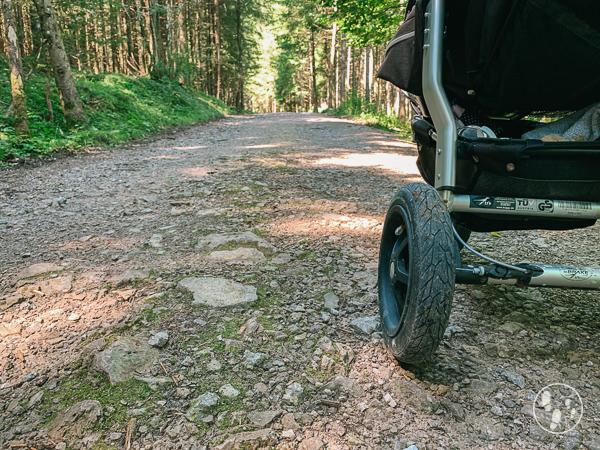 Fischbachauer Märchenwald mit Kinderwagen